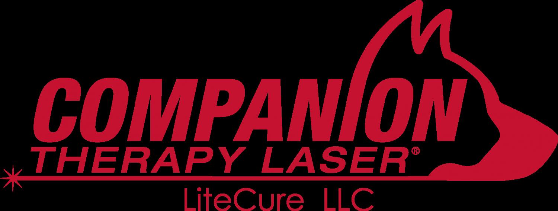 laser logo